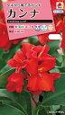 【メール便対応】【タキイ種苗】【花種】カンナ トロピカル レッド(FCA121)