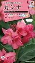 【メール便対応】【タキイ種苗】【花種】カンナ トロピカル ローズ(FCA122)