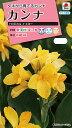 【メール便対応】【タキイ種苗】【花種】カンナ トロピカル イエロー(FCA126)