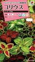 【メール便対応】【タキイ種苗】【花種】コリウス ウィザード混合(FCL190)