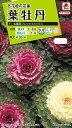 【有効期限間近】【メール便対応】【タキイ種苗】【花種】葉牡丹 丸葉系フレッシュミックス(FHB530)