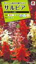 【メール便対応】【タキイ種苗】【花種】サルビア カラビニエール混合(FSR129)
