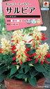 【メール便対応】【タキイ種苗】【花種】サルビア トーチライト(FSR251)