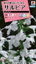【メール便対応】【タキイ種苗】【花種】サルビア ユキプルコ(FSR303)