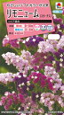 タキイ種苗 【メール便対応】リモニューム(スターチス) ソピア混合(FSU260)※5000円以上お買い上げで送料無料