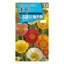 タキイ種苗 花種 ポピー アイスランド混合 B05-018 M