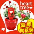 ハートツリー 花 TVや雑誌で話題! 赤い ハート の実 がなる木 誕生日 プレゼント 結婚祝い 出産祝い おすすめ ギフト 鉢 鉢植え ミニ植物 jbcht (c)