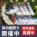 北海道厚岸産 時鮭トキシラズ半身約1kg★【自宅用簡易包装】【北海道】