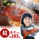 浜名湖うなぎ約285g 超特大蒲焼 【 数量限定 】【 国内...