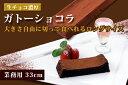 生チョコ濃厚ガトーショコラ 大きさ自由に切って食べれる業務用33cmロングサイズ