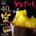 2016新物 ねっとり濃厚!蜜芋うなぎいも5kg箱 品種名紅はるか♪焼き芋に最適!【送料無料】