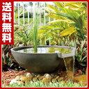 ゼンスイ スイレン滝セット ウォーターインテリア 庭園 ガーデン 池作り 【送料無料】