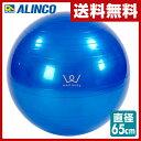 アルインコ エクササイズボール バランス ストレッチ