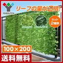 【あす楽】 山善(YAMAZEN) グリーンフェンス リーフラティス(約100×200cm)ダブルリー