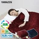 電気毛布 空気をキレイにする 電気掛・敷毛布 188×130...