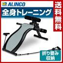 アルインコ(ALINCO) マルチコンパクトジム EXG042 マルチジム シットアップベンチ レッ...