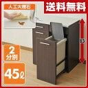 【期間限定5%OFF】 ダストボックス 2分別 キッチンカウンター 送料無料