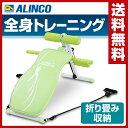 アルインコ(ALINCO) マルチコンパクトジム EXG042G グリーン マルチジム シットアップベンチ レッグマシン アームマシン 【送料無料】
