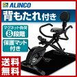 【あす楽】 アルインコ(ALINCO) 3WAYバイク BK2000 エクササイズバイク フィットネスバイク エアロバイク 【送料無料】