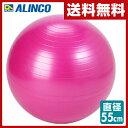 アルインコ(ALINCO) エクササイズボール 55cm エアポンプ付 EXG124P ピンク バランスボール フィットネスボール ヨガボール 【送料無料】