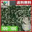 【あす楽】 山善(YAMAZEN) リーフラティス(約100×100cm)ハードネットタイプ LLH-11C(FG) フォレストグリーン 目隠し グリーンカーテン リーフフェンス 観葉植物 【送料無料】