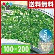 【あす楽】 山善(YAMAZEN) リーフラティス(約100×200cm)ソフトネットタイプ LLS-12C(LG) ライトグリーン 目隠し グリーンカーテン リーフフェンス 観葉植物 【送料無料】