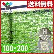 【あす楽】 山善(YAMAZEN) リーフラティス(約100×200cm)ハードネットタイプ LLH-12C(LG) ライトグリーン 目隠し グリーンカーテン リーフフェンス 観葉植物 【送料無料】