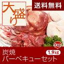 【送料無料】お花見・キャンプ・バーベキューに!【大盛り】炭焼バーベキューセット(4種類計1.9kg)=(焼肉肉焼き肉バーベキューBBQバーベキューセット)【2sp_121011_green】