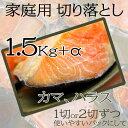 サーモン香味漬カマ・ハラス 約1Kg+もう500g+α・簡易包装、(訳あり:厚さ大きさにばらつき)