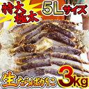 【送料無料】【同梱不可】特大生たらばがに(5Lサイズ)3kg...