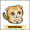 □猫【フェイスステッカー】 スコティッシュフォールドブラウン(ネームは入りません)/全国各地で今売れてます!車や家具、お気に入りの場所に貼っ...