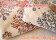 西川リビングシングルサイズ 綿毛布(毛羽部分)(日本製)プレオーガニックコットン使用