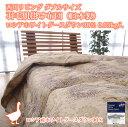 西川リビング ダブルサイズ 羽毛肌掛け布団 (日本製)ロシアホワイトグースダウン90% 0.55kg入