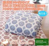 京都西川 シングルサイズ 洗える 羽毛肌掛け布団 (日本製)ハンガリー産ホワイトダウン85% 0.3kg