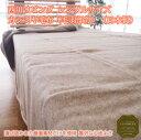 西川リビング シングルサイズ カシミヤ毛布(毛羽部分)(日本製)