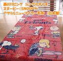 西川リビング シングルサイズ スヌーピー(SNOOPY)アクリルニューマイヤー毛布(日本製)