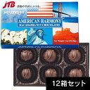 【アメリカ お土産】アメリカンハーモニー マカダミアナッツチョコ6粒入12箱セット|