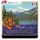 レネレイ メープルクリームダークチョコ チョコレート カナダ カナダ土産 おみやげ お菓子