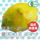 【有機栽培】【無農薬レモン】福島さん家の訳ありレモン 2kg 【国産】