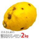 【国産・特別栽培・減農薬】青木さん家の訳ありレモン【2kg/900円】