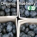 【有機JAS・無農薬】 冷凍 ブルーベリー 1kg 【カナダ産】【冷凍食品以外と同梱不可】