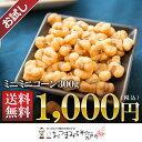 【お試し送料無料】ミニミニコーン 300g サックサクの新食感!【メール便発送※代引き不可】【1868】