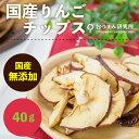 国産りんごチップス 40g 【317】