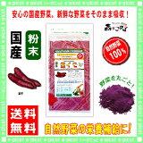 【】 国産 紫イモ粉末 ( 100g ) 紫芋 [ やさいパウダー100% ] 野菜ジュースの素 ■ 国産 野菜粉末☆アカルイ☆ミライ放送で大注目!紫いも