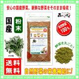 【】 国産 ヨモギ粉末 ( 100g )[ やさいパウダー100% ] 野菜ジュースの素 ■ 国産 野菜粉末 ( 蓬 ) よもぎ