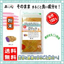 【送料無料】 ガジュツ茶 [紫ウコン] (粉末)パウダー [100g] 森のこかげ 健やかハウス むらさき うこん がじゅつ