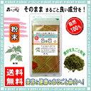 【送料無料】桑の葉茶 (粉末)パウダー [100g] 森のこかげ 健やかハウス