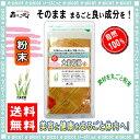 【送料無料】 大麦若葉茶 (粉末)パウダー [100g] (おおむぎわかば茶) 森のこかげ 健やかハウス 青汁 おおむぎ わかば