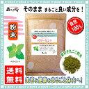 【送料無料】ペパーミント (粉末)パウダー [500g] 森のこかげ 健やかハウス