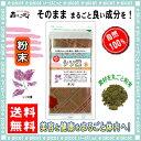 【送料無料】 シソ葉茶 (粉末)パウダー [100g] 森のこかげ 健やかハウス シソの葉 しそ葉 しその葉 シソ茶 しそ茶